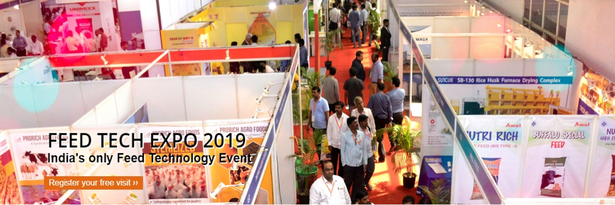 Feed Tech Expo 2019